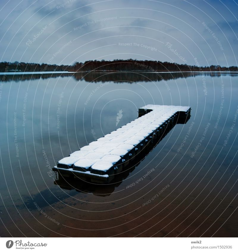 waterbed Environment Nature Landscape Water Sky Clouds Horizon Winter Climate Beautiful weather Snow Forest Lake Olba Lausitz forest Germany Saxony Jetty