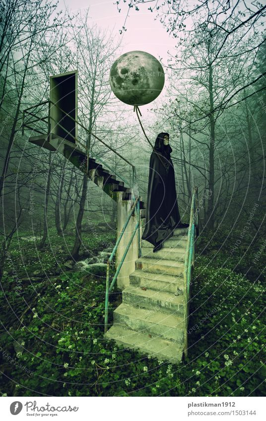 moon Woman Adults 1 Human being Power Moon Stairs Door Balloon Virgin forest Forest Tree Nature Mysterious Fantasy Manipulation Digital photography Dream Black