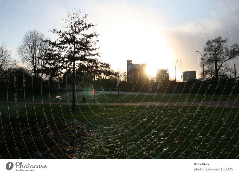 Sky City Green Beautiful Tree Sun Clouds Winter Environment Garden Park Free High-rise Esthetic Hamburg Hope