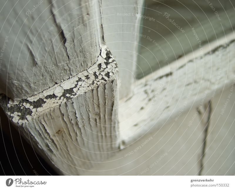 White Window Wood Dye Weather Glass Transience Derelict Crack & Rip & Tear Window pane Varnish Flake off Dandruff Paintwork Window frame
