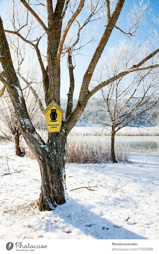 nature reserve Nature Landscape Cloudless sky Winter Climate Beautiful weather Ice Frost Snow Tree Park Lake Sign Signs and labeling Signage Warning sign