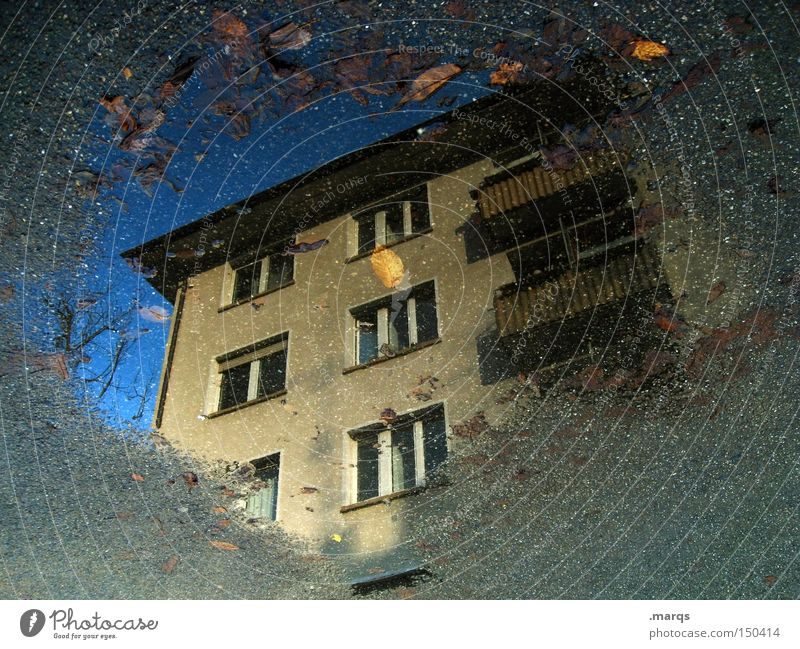 dreariness Cold House (Residential Structure) Wet Town Tenant Puddle Autumn Balcony Window Living or residing Flat (apartment) Backyard Landlord Reflection
