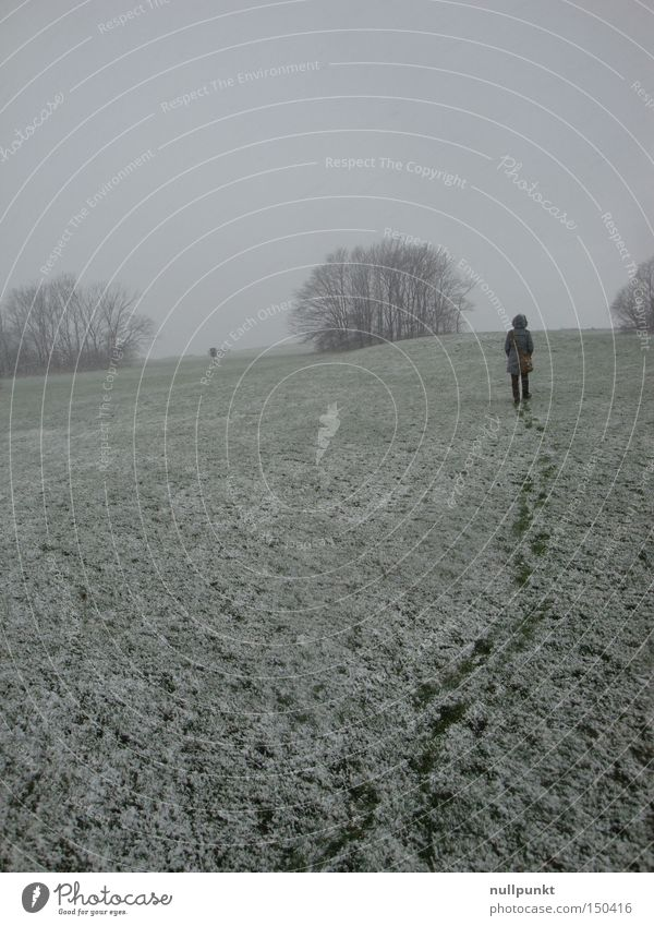 Tracks behind me Snow White Footprint Lanes & trails Behind Meadow Tree Winter Loneliness Horizon Coat Cold Woman tramp