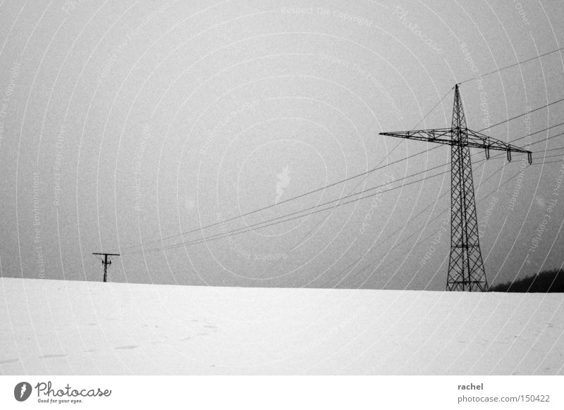 Feel uncomfortable Winter Snow Energy industry Landscape Climate Weather Bad weather Ice Frost Dark Cold Gloomy Precipitation Electricity pylon