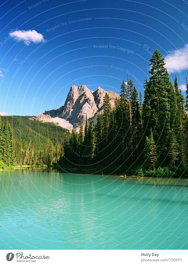 Sky Tree Green Blue Clouds Mountain Lake Turquoise Canada Precious stone Smoothness Blue sky National Park Jewellery Rocky Mountains Emerald