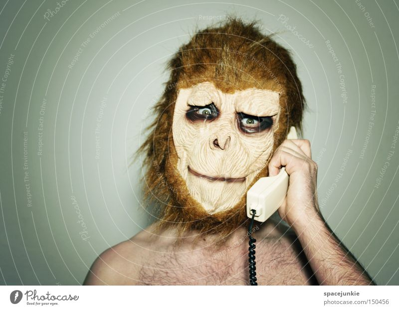 Joy Animal To talk Telephone Mask Carnival Telecommunications Monkeys To call someone (telephone) Dress up Receiver