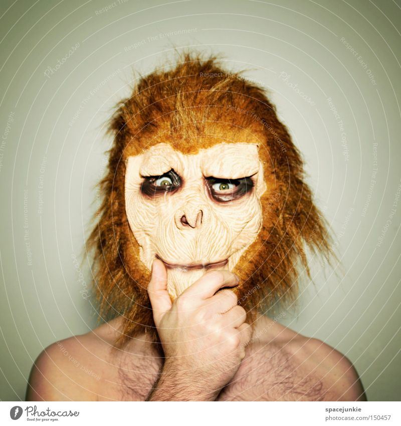 Joy Animal Think Funny Mask Carnival Whimsical Monkeys Humor Dress up Doubt Self doubt