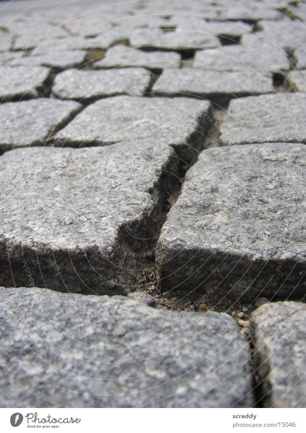 cobblestones Seam Gray Macro (Extreme close-up) Close-up cobblestone pavement Stone Structures and shapes Paving stone