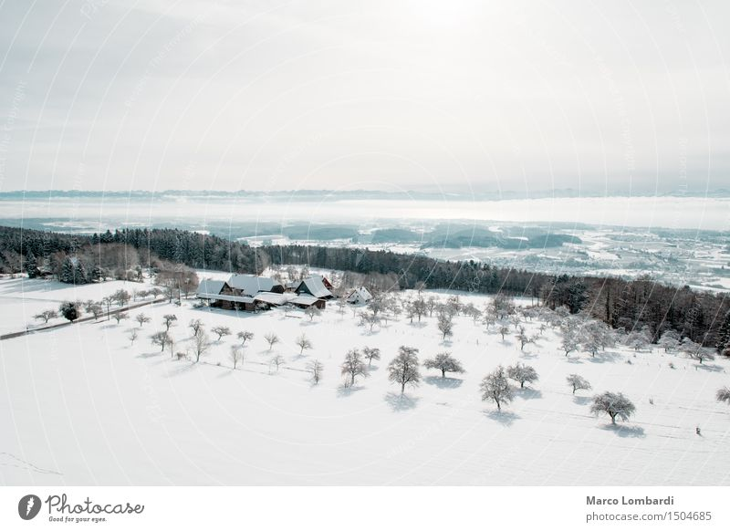 Sky Nature Blue White Tree Sun Relaxation Winter Mountain Environment Snow Tourism Air Hiking Climate Beautiful weather