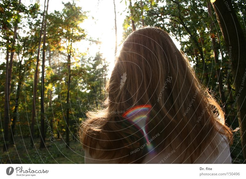 Woman Nature Tree Sun Green Forest Hair and hairstyles Bright Lighting Red-haired