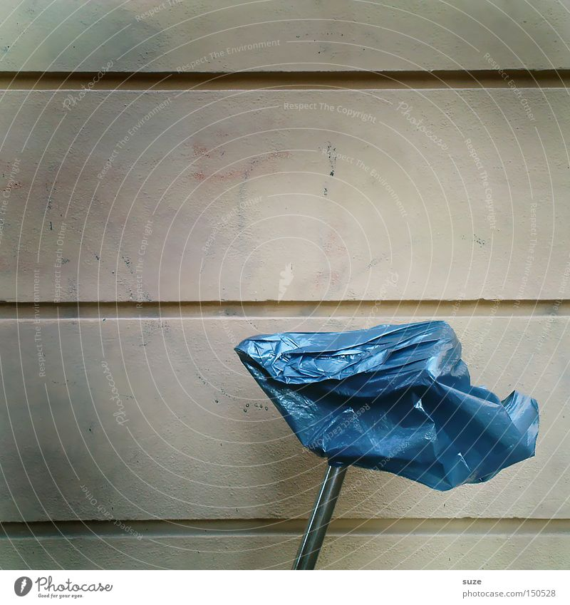 Blue Wall (building) Funny Bicycle Leisure and hobbies Transport Lifestyle Protection Parking Paper bag Means of transport Weather protection Bicycle saddle