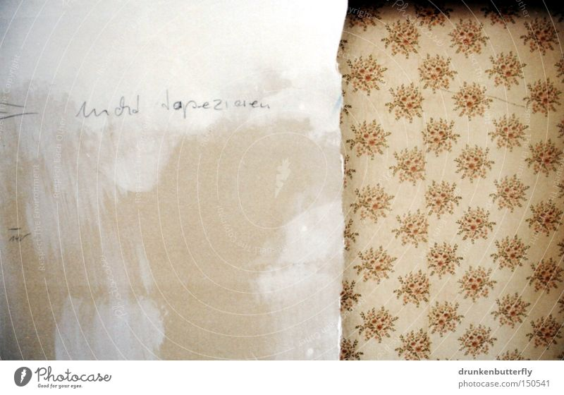 do not wallpaper Wallpaper Flower Wall (building) Dismantling White Gray Beige Brown To wallpaper Background picture Derelict Colour Old