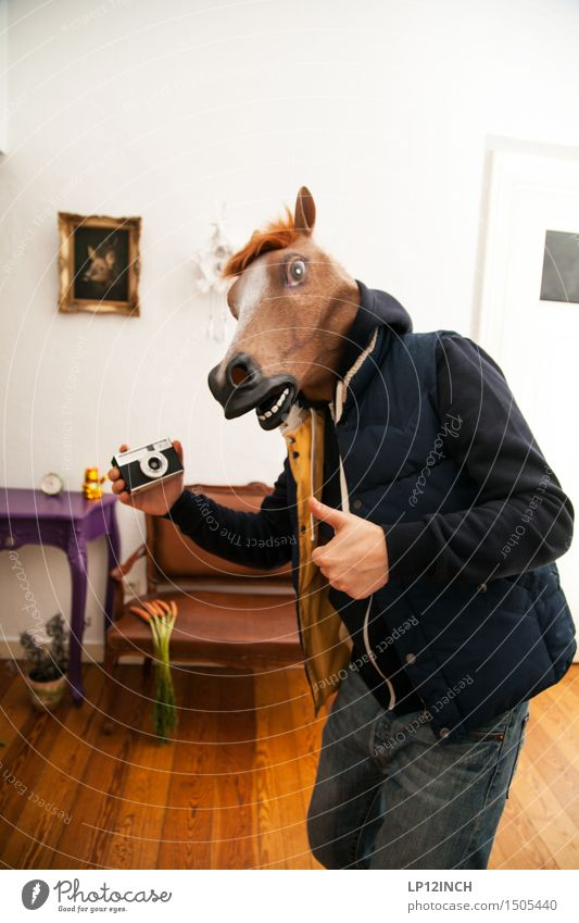 LP. HORSEMAN. XV Living or residing Flat (apartment) Party Carnival Hallowe'en Masculine Man Adults 1 Human being Horse Animal Exceptional Brash Friendliness