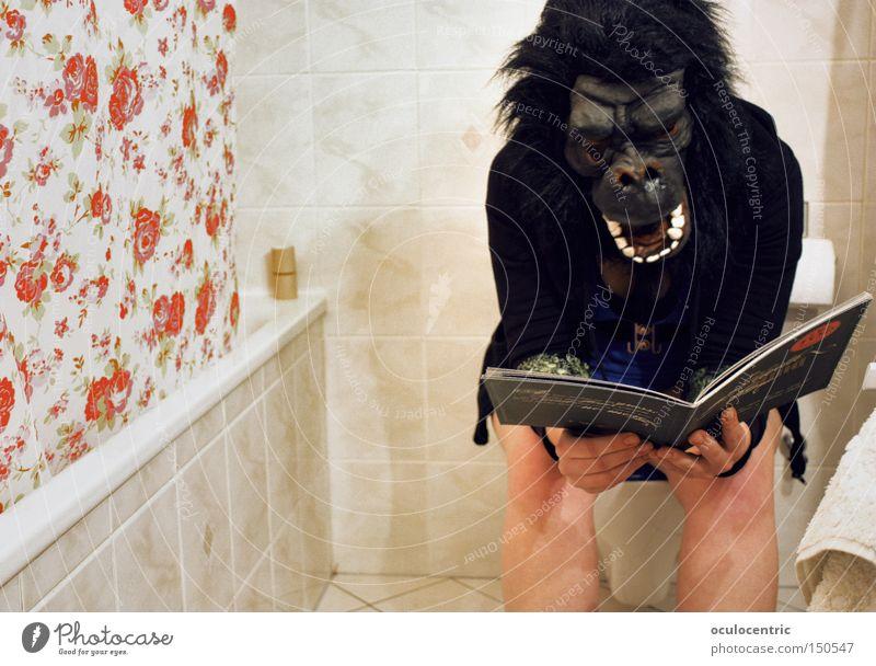 Think Planning Reading Bathroom Carnival Toilet Tile Christianity Idea Bathtub Mammal Shower (Installation) Monkeys Carnival costume Apes Room