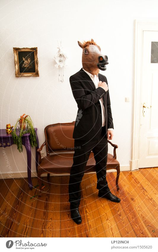 Human being Animal Style Lifestyle Flat (apartment) Masculine Living or residing Crazy Clothing Vegetable Bench Horse Mask Carnival Creepy Suit