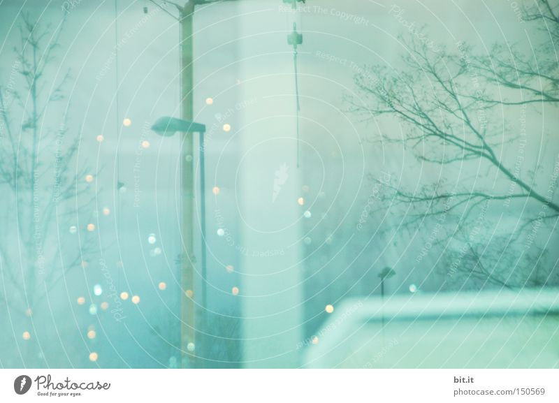 Sky Blue Winter Snow Dream Art Ice Moody Feasts & Celebrations Glittering Design Frost Uniqueness Image Idea Mysterious