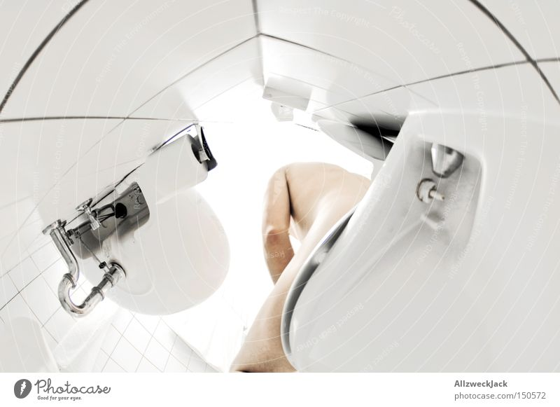 Man White Naked Bright Bathroom Clean Pure Toilet Tile Sink Fisheye Perspective Piddler