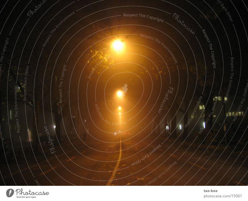 Street Car Fog Street lighting