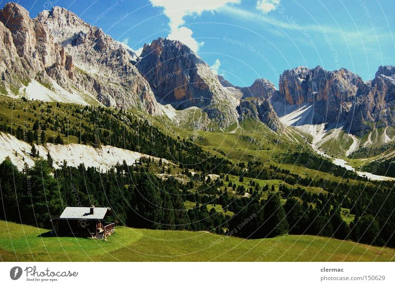 Vacation & Travel Meadow Mountain Hiking Italy Climbing Alps Alpine pasture