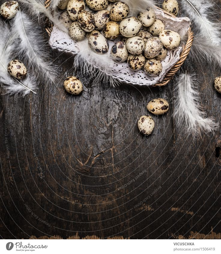 Quail eggs in basket with feathers Food Style Design Healthy Eating Life House (Residential Structure) Interior design Decoration Table Easter Nature