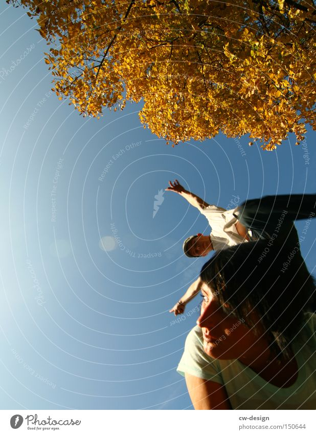 Human being Woman Man Youth (Young adults) Tree Sun Summer Joy Autumn Jump Couple Flying Aviation Trust Funsport