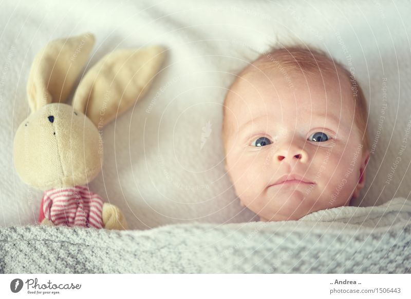 Relaxation Joy Love Funny Feminine Family & Relations Happy Gray Couple Together Friendship Contentment Lie Infancy Baby Observe