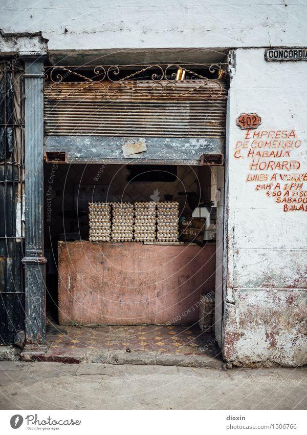 egg(nzel)trade, cuban Food Egg Eggs cardboard Egg carton Vegetarian diet Vacation & Travel Tourism Far-off places City trip Trade Retail sector Havana Cuba