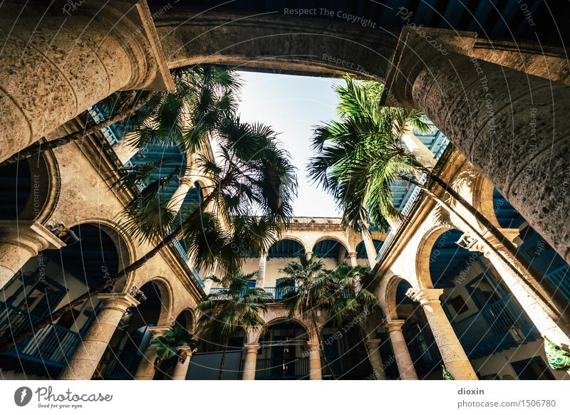 Sky Vacation & Travel City Old Plant Tree House (Residential Structure) Far-off places Architecture Building Tourism Manmade structures Balcony Wanderlust