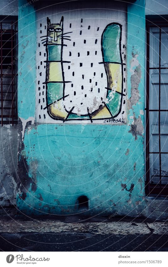 cuban streetart Vacation & Travel Sightseeing City trip Art Work of art Painting and drawing (object) Street art Graffiti Illustration Havana Cuba
