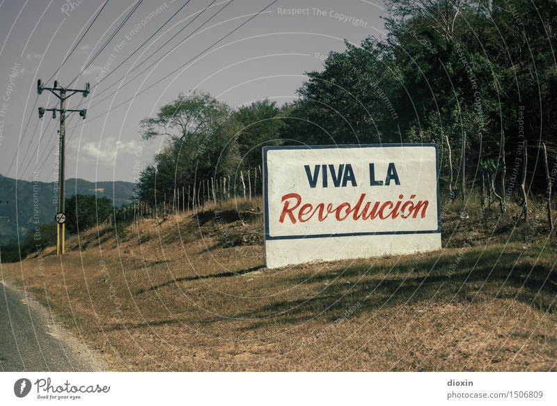 Viva la Revolución Vacation & Travel Tourism Far-off places Electricity pylon Environment Nature Beautiful weather Plant Tree Bushes Cuba Central America
