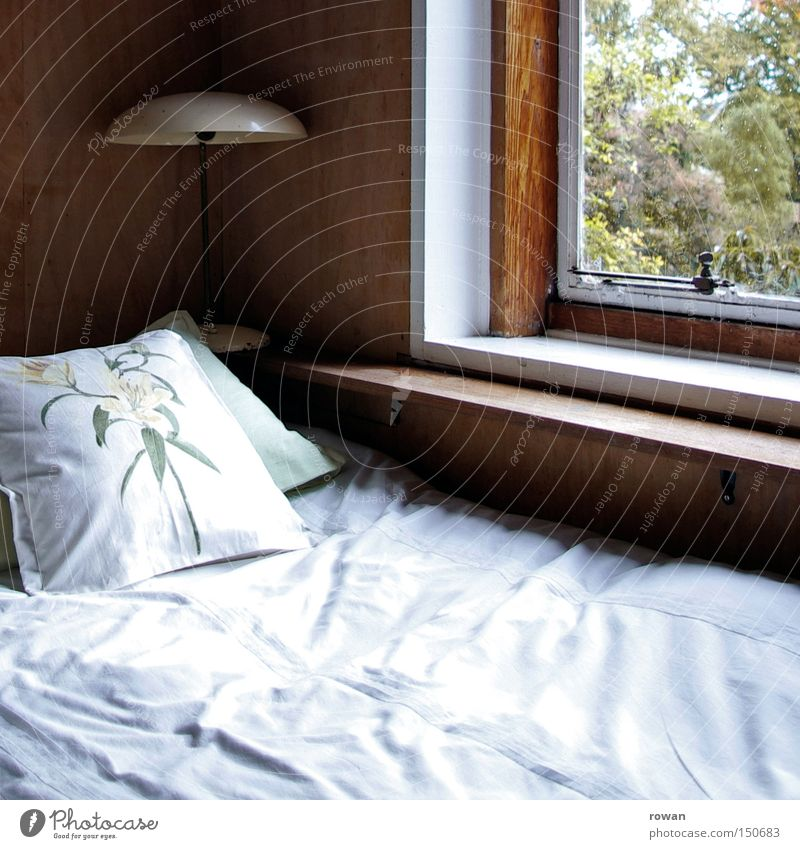 Good morning Bed Window Sleeping place Calm Slumber Bedroom Cushion Rest Good night Morning Dawn Wake up Lamp Detail Pillow