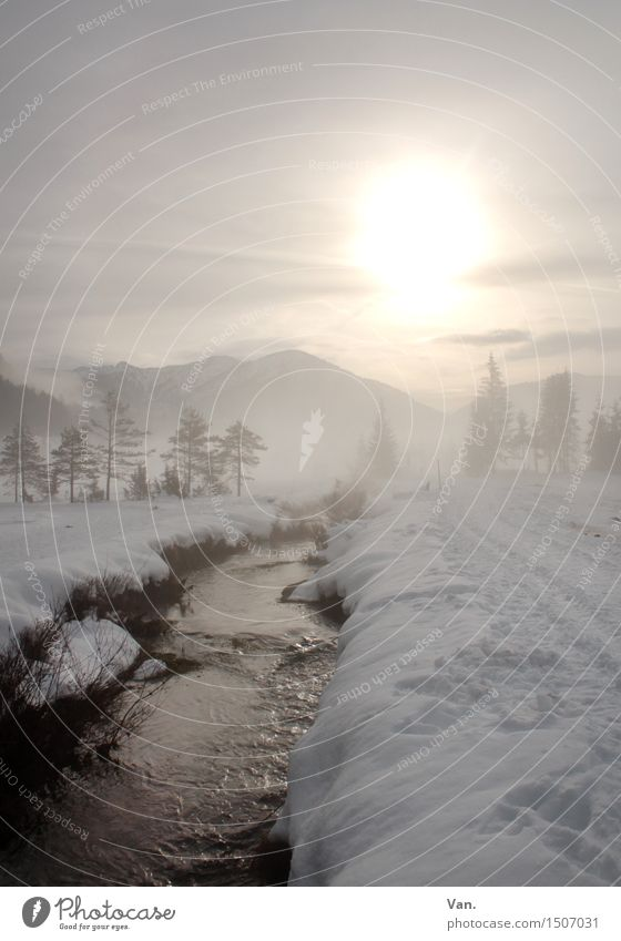 winter walk Nature Landscape Water Sky Sun Sunlight Winter Ice Frost Snow Hill Mountain Brook River Cold Beautiful To go for a walk Colour photo Subdued colour