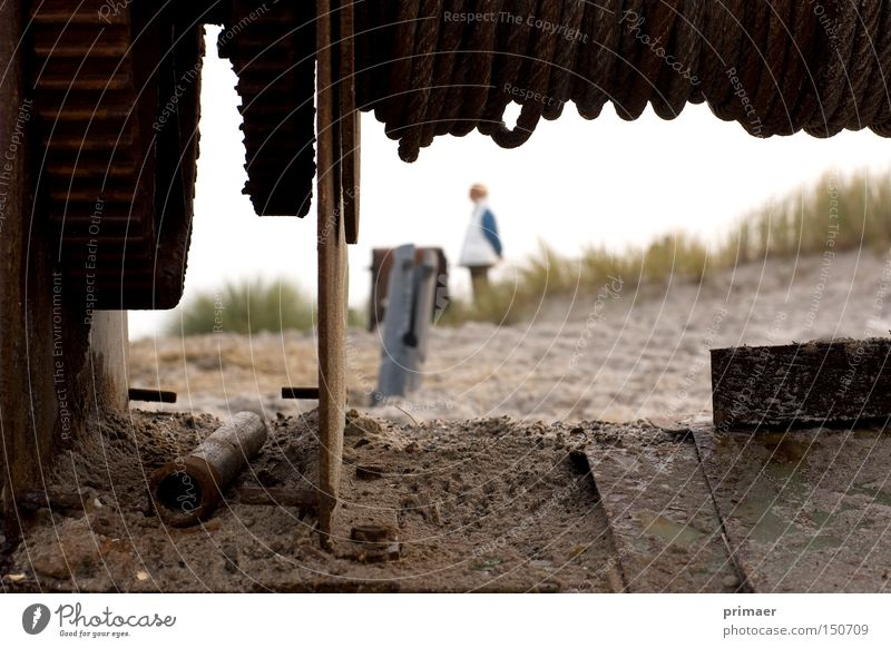 Nature Old Beach Death Autumn Sand Earth Transience Grief Longing Beach dune Past Dune Machinery Forget Monochrome