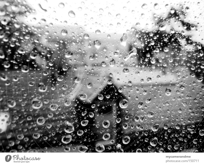 november rain Autumn Rain Drops of water Gray Cold Wet Loneliness Weather Window Glass Macro (Extreme close-up) October November Sadness