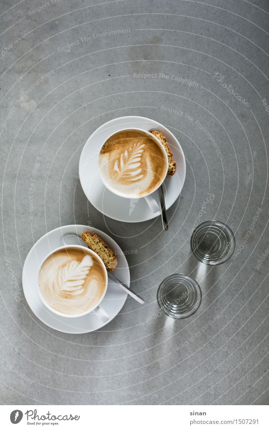 White Gray Brown Feather Table To enjoy Concrete Break Coffee Delicious Breakfast Hip & trendy Café Cup Vintage Milk