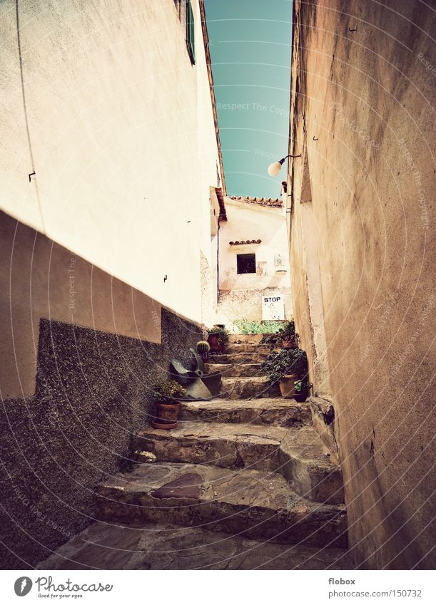 summer warmth Majorca Spain Village Backyard Alley Siesta House (Residential Structure) Vacation home Vacation & Travel Summer Stairs Tourism Town Historic
