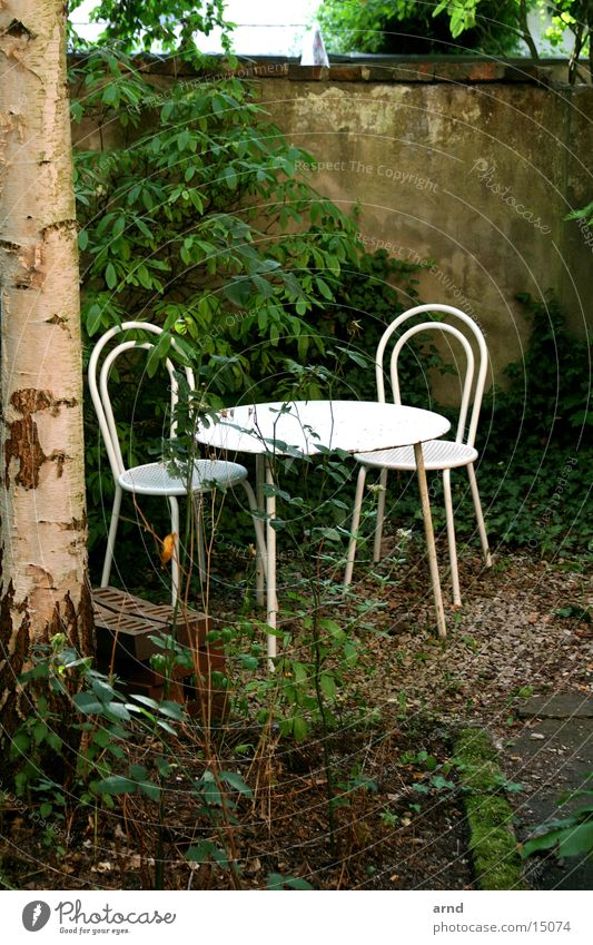 Tree Garden Wall (barrier) Table Chair