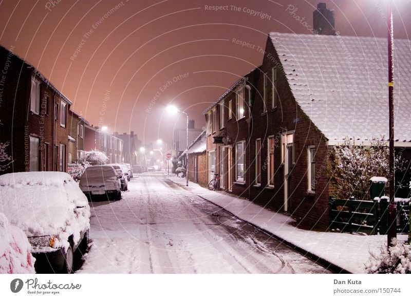 Christmas & Advent City Winter Calm Cold Snow Moody Ice Frost Street lighting Night shot Lamp post Snow layer Residential area Winter mood