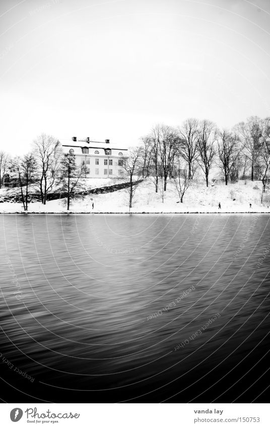 Stockholm Views II House (Residential Structure) Water Tree Snow Cold Winter Coast Living or residing Loneliness Landscape Nature Lake Black & white photo River