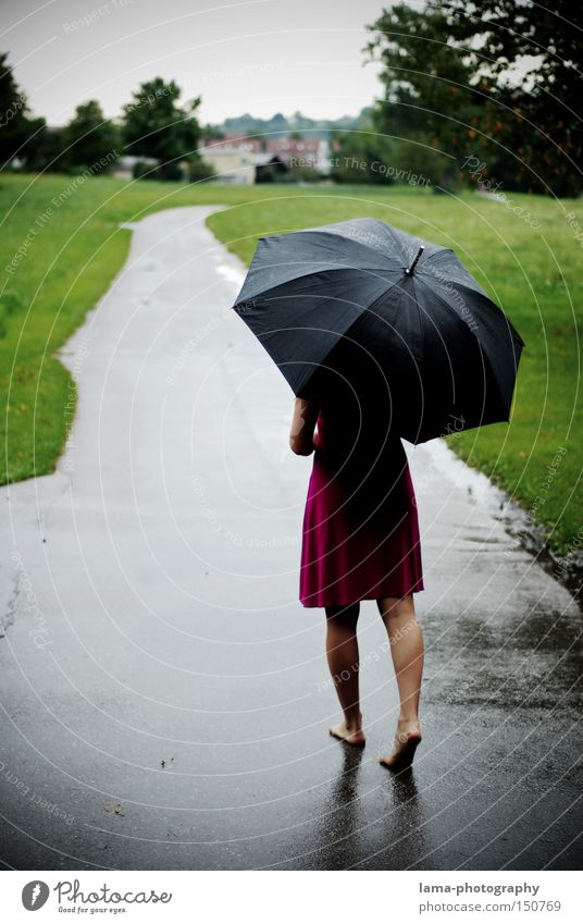 barefoot Woman Umbrella Rain Thunder and lightning Barefoot Dress Autumn Wet Lanes & trails To go for a walk Puddle Meadow Grief Light heartedness Distress