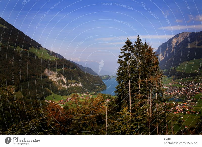 valley view Relaxation Vacation & Travel Trip Summer Summer vacation Mountain Hiking Environment Nature Landscape Elements Sky Beautiful weather Tree Lake