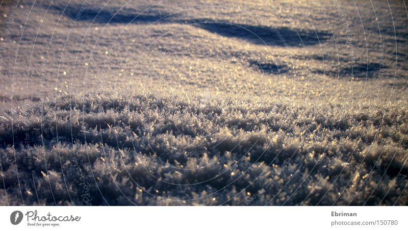 White Winter Cold Snow Lake Ice Glittering Frost Tracks Frozen Ice crystal