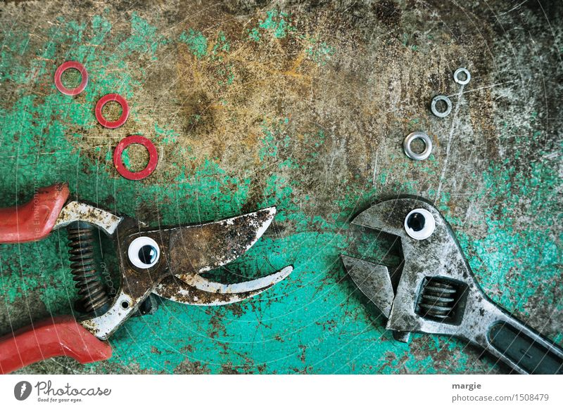 Red Animal Eyes Metal Work and employment Technology Communicate Fish Turquoise Services Argument Workshop Tool Figure Aggression Craftsperson
