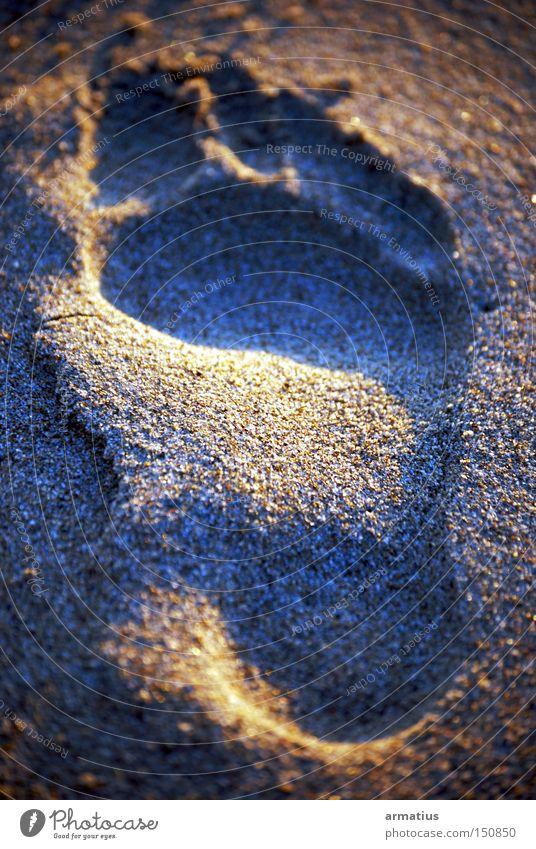 Ocean Summer Beach Vacation & Travel Freedom Feet Sand Tracks Footprint Anatomy