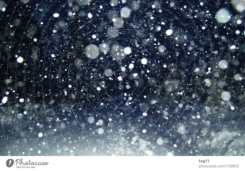 on the verge of ... SECOND Snowflake Snowfall Night Flake To go for a walk Winter Moody Atmosphere Erz Mountains Cold Romance Tree onset of winter