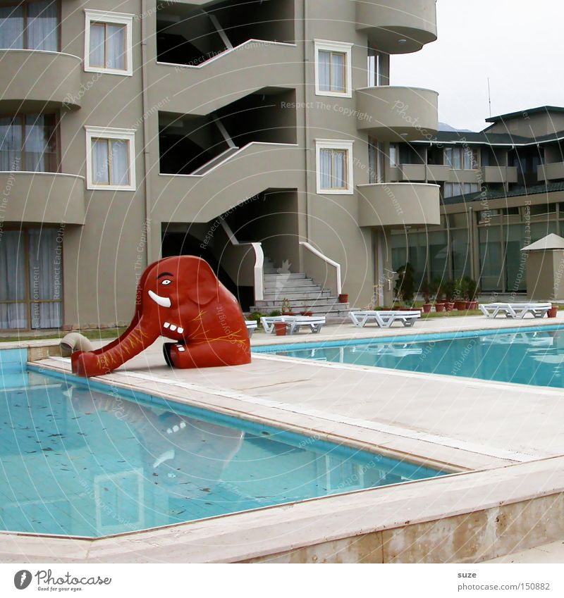 Ri-Ra-Slide Leisure and hobbies Vacation & Travel Summer Swimming pool Red Elephant Hotel Infancy Colour photo Exterior shot Deserted Day Animal figure
