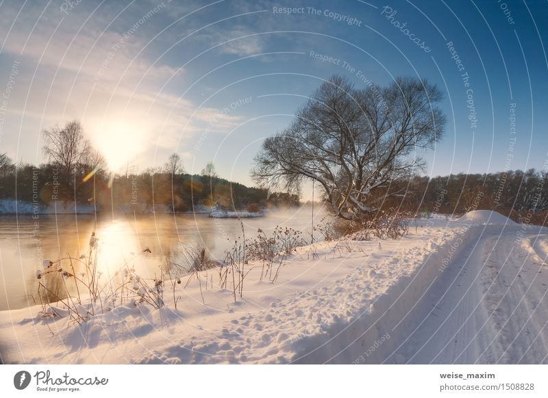 Sunny winter morning on a river Sky Nature Blue White Tree Landscape Clouds Winter Forest Black Yellow Meadow Snow Grass Field
