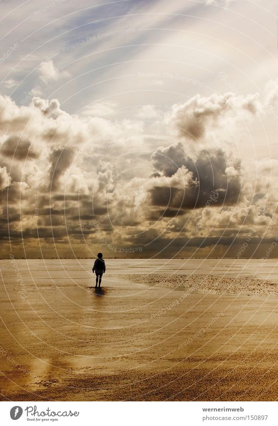 watt gold North Sea Ocean Water Clouds Cloud formation Gold Slick Mud Calm Loneliness Silhouette Nature Hiking Barefoot Light Beautiful Sky