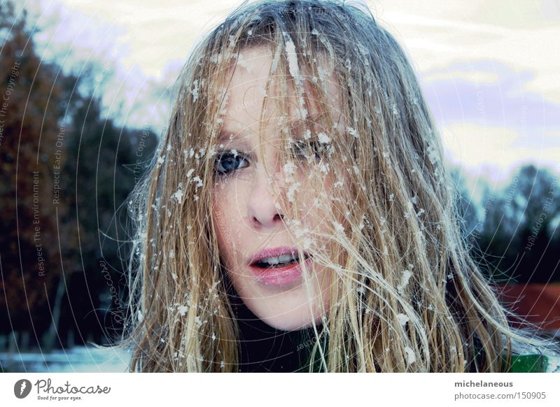 Woman Beautiful White Tree Joy Winter Face Cold Snow Hair and hairstyles Brown Blonde Flake