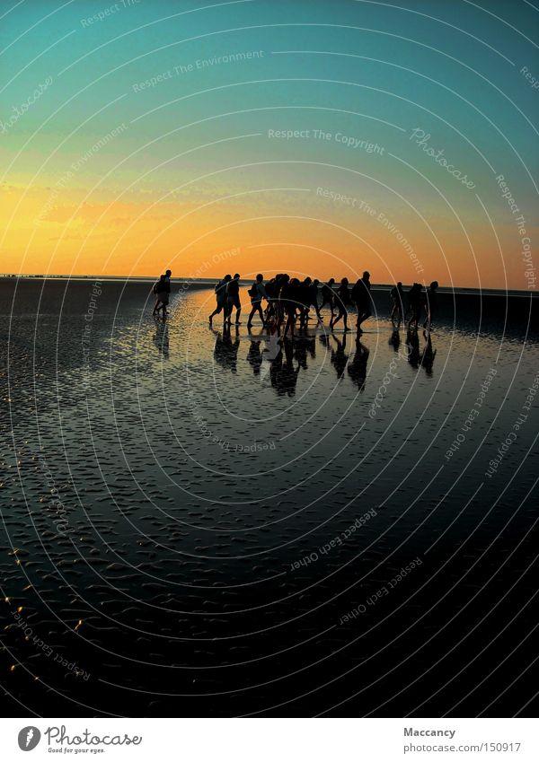 tightrope walk France Sunset Shadow Silhouette River Ocean Beach Colour transition Horizon Traverse Coast Peace